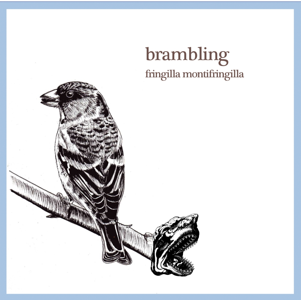 cd cover brambling cropped